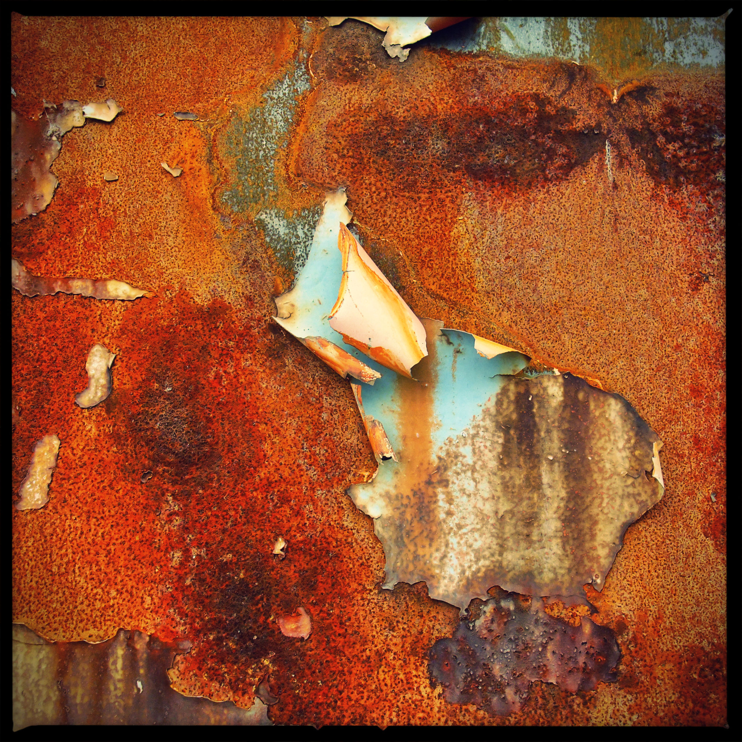 Rusty Flakes 1/3
