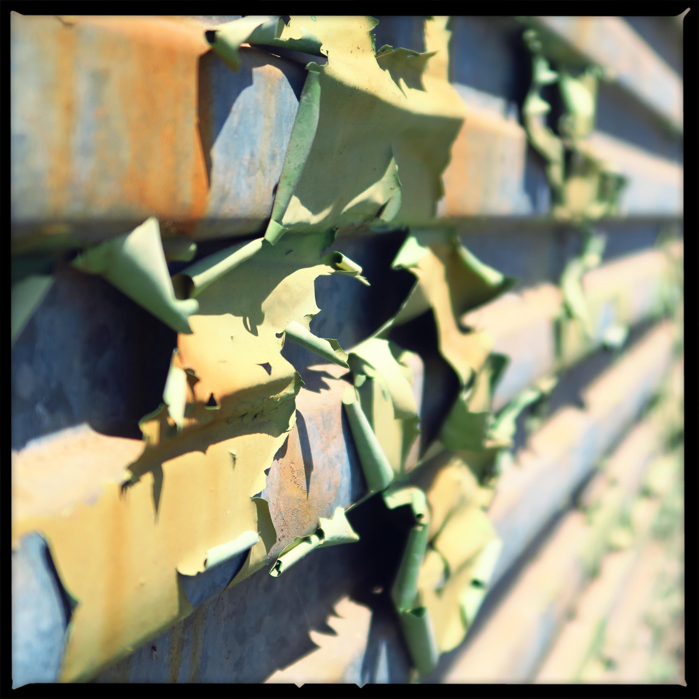 Green Flakes 1/3