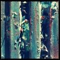 Metal Flakes 1/3