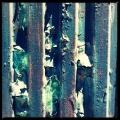 Metal Flakes 3/3