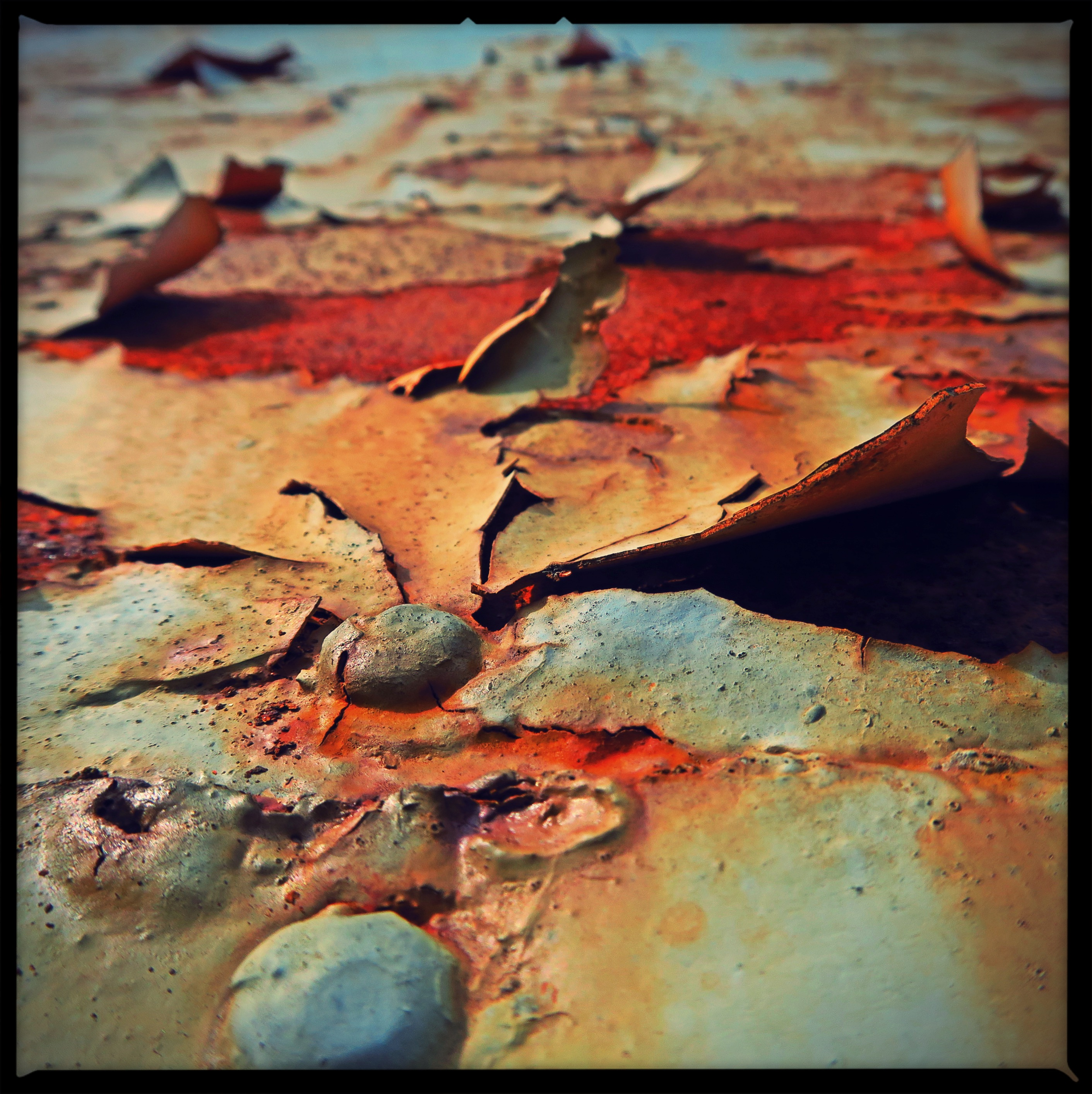 Rust at Dawn 1/3