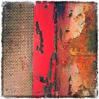 Flaming Reds 2/3