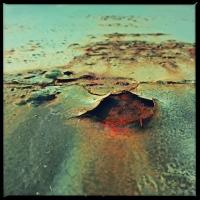 Rust at Dusk 2/3